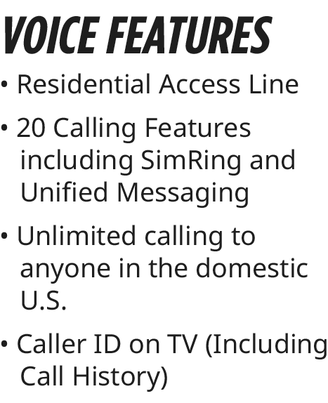 voice features